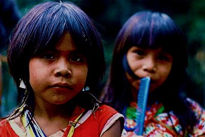Peru: Wikileaks Cables Reveal the Pro-Mining/Anti-Indigenous Sentiment of the US