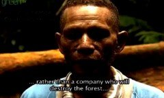 Indigenous Papuans Fear Large Logging Companies Are Destroying Ancient Forests