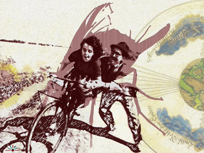 Identity Transduction Arts, Series 1.2: Fly!
