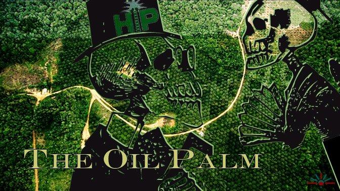 Oil palm plantation cheats indigenous Papuans in outrageous land deals