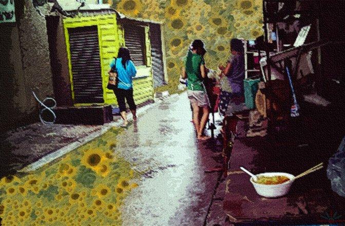 sunflowers_zash_akr