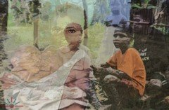 West_Papua_Infant_Mortality
