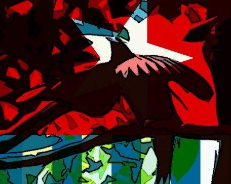 papua-merdeka-bird-crop