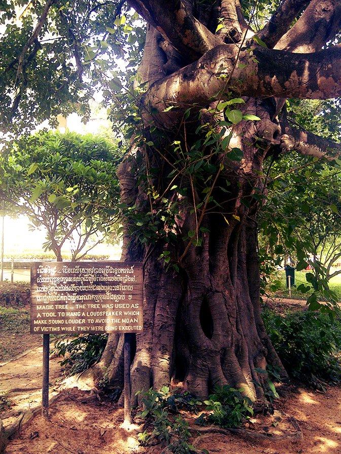 genocide-magic-tree