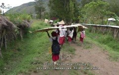 School kids trying to protect themselves from the rain (Wamena, West Papua)