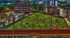kuala-lampur-cemetery-colorfix